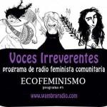 Voces Irreverentes Programa nº 5 – el Ecofeminismo