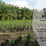 La expansión del agronegocio – Ojo de agua