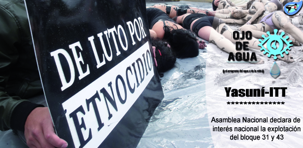 Yasuní, Asamblea declara explotación de interés nacional