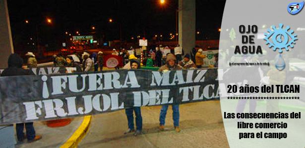20 años del TLCAN: las consecuencias del libre comercio para el campo