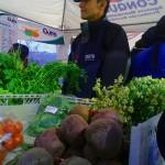 Agricultura Familiar: una opción alimentaria y política – programa Ojo de agua