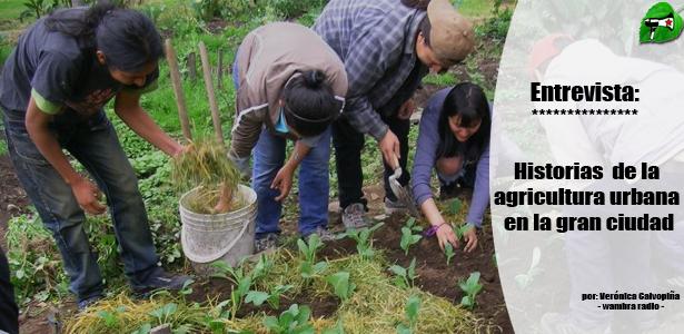 Historias de agricultura urbana en la gran ciudad