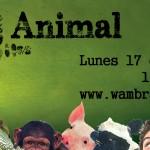 Ser + Animal, ¿de qué trata este programa?