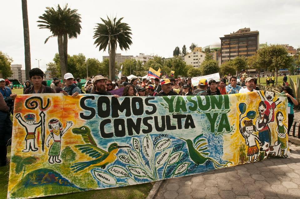 Yasunidos: recolectó más de 727mil firmas para consulta popular
