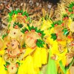 Brasil – Historias de carnaval