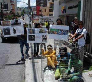 activistas animales