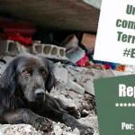 Una mirada comunitaria al Terremoto en #Ecuador
