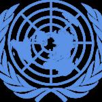 La responsabilidad del Estado ¿Qué dicen los organismos internacionales de Derechos Humanos?