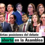 Las distintas posiciones del debate sobre aborto en la Asamblea