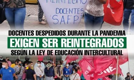 Docentes despedidos durante la pandemia exigen ser reintegrados según la Ley de Educación intercultural